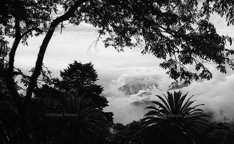 02.2010  Coroico (Bolivia)<br /> <br /> Vue matinale sur les montagnes de coroico.<br /> <br /> Morning view of the mountains of coroico.