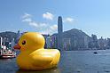 Rubber Duck by Dutch conceptual artist Florentijn Hofman at Victoria Harbour in Hong Kong