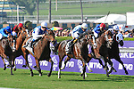 7 November 2009:  Goldikova (f) with O. Preslier up (outside, white cap) drives toward the wire in the $2 Million Breeder's Cup Turf Mile at Oak Tree at Santa Anita in Arcadia California.