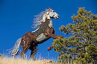 Pony, MT