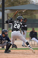 Chicago White Sox right fielder Craig Dedelow (28) during a Minor League Spring Training game against the Chicago White Sox at Camelback Ranch on March 16, 2018 in Glendale, Arizona. (Zachary Lucy/Four Seam Images)