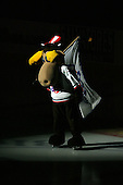 December 30th, 2007:  The Rochester Amerks mascot MOOSE skates before a game vs. the Syracuse Crunch at Blue Cross Arena at the War Memorial in Rochester, NY.  Photo Copyright Mike Janes Photography 2007.