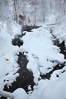 Visitors enjoy the natural hot springs at Tolovana hot springs, Interior, Alaska.