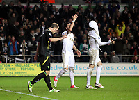 Barclays Premier League, Swansea City (White) V Norwich City (black) Liberty Stadium, Swansea, 08/12/12<br /> Pictured: Chico Flores and Michu can't believe this goal was disallowed.<br /> Picture by: Ben Wyeth / Athena <br /> Athena Picture Agency<br /> info@athena-pictures.com