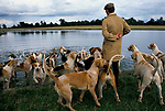 'DUKE OF BEAUFORT HUNT', PROFESSIONAL HUNTSMAN, CHARLES WHEELER, FIRST WHIPPER-IN, WALKING THE HOUNDS IN BADMINTON PARK AFTER A MORNING'S HUNTING