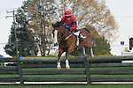 25 Apr 2009: Westfield Dancer with Richard Spate up, clears a timber jump on his way to winning the Grover Vandevender Memorial timber race at the Foxfield Races in Charlottesville, Virginia. Westfield Dancer is owned by Lucy Horner and trained by Barbara McWade.
