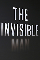 """LOS ANGELES - FEB 24:  Atmosphere at the """"The Invisible Man"""" Premiere at the TCL Chinese Theater IMAX on February 24, 2020 in Los Angeles, CA"""