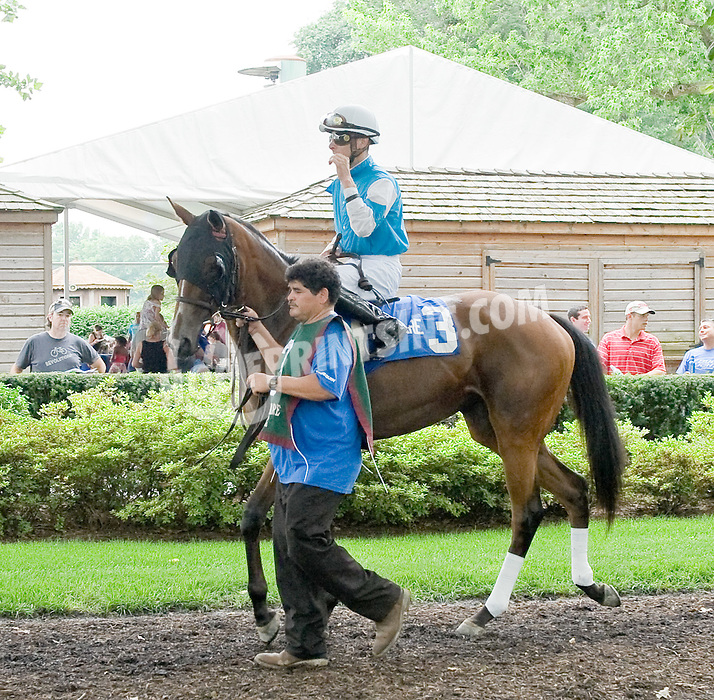 She Be Classy before The Rooney Memorial Stakes at Delaware Park on 6/18/11
