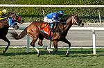 10-03-20 Santa Anita Stakes
