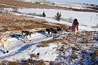Lance Mackey on snowless tundra just up from the Unalakleet river nearing Unalakleet