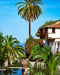 Spanien, Kanarische Inseln, Teneriffa, Icod de los Vinos: im Parco del Drago | Spain, Canary Islands, Tenerife, Icod de los Vinos: at Parco del Drago