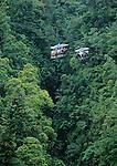 aerial tram in the Morne Trois pitons national park<br /> <br /> Un telesiege installe dans les hauteurs de la jungle du parc de Morne Trois pitons permet de decouvrir la vegetation et la canopee en toute securite a 30 m de haut.Un telesiege (aerial tram) installe dans les hauteurs de la jungle du parc de Morne Trois pitons permet de decouvrir la vegetation et la canopee en toute securite a 30 m de haut.