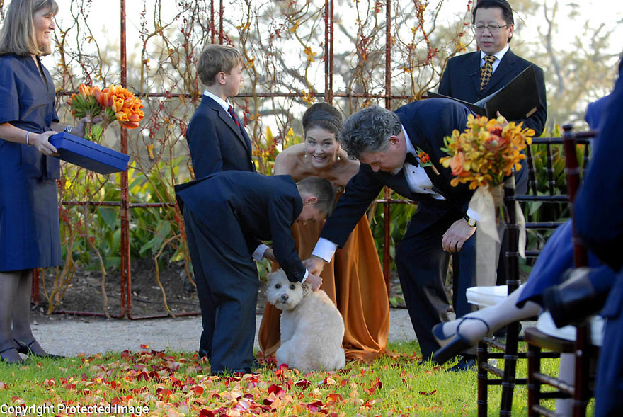 The flower dog waits as the wedding party of Randy Fertel and Bernadette Murray get the rings off of her collar at the outdoor ceremony in Audubon Park, New Orleans, Saturday, March 10, 2007..(Cheryl Gerber for New York Times).. Weddings, New Orleans Photographer