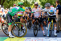 July 9th 2021. Carcassonne, Languedoc, France;  CAVENDISH Mark (GBR) of DECEUNINCK - QUICK-STEP, POGACAR Tadej (SLO) of UAE TEAM EMIRATES, QUINTANA Nairo (COL) of TEAM ARKEA - SAMSIC, VINGEGAARD Jonas (DEN) of JUMBO-VISMA  during stage 13 of the 108th edition of the 2021 Tour de France cycling race, a stage of 219,9 kms between Nimes and Carcassonne.