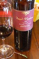 Bottle of Angel A Mendoza Malbec Cabernet Sauvignon 1997 Pura Sangre Domaine St Diego Lunlunta Maipu Mendoza The O'Farrell Restaurant, Acassuso, Buenos Aires Argentina, South America
