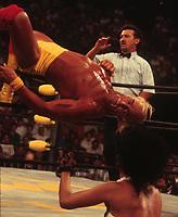 Hulk Hogan 1994<br /> Photo By John Barrett/PHOTOlink