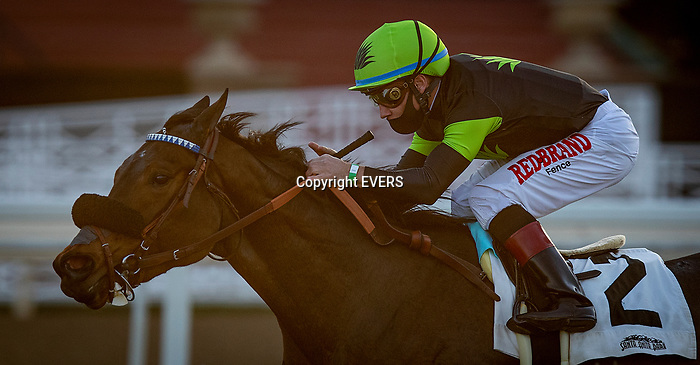 January 09, 2021: Charmaine's Mia with Drayden Van Dyke wins the La Cienegas Stakes at Santa Anita Park in Arcadia, California on January 9, 2021. Alex Evers/Eclipse Sportswire/CSM