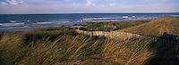 Europe/France/Nord-Pas-de-Calais/59/Nord/Dunkerque/Malo-les-Bains : Dunes et côte sableuse