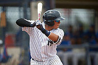 GCL Yankees East catcher Carlos Gallardo (16) at bat during the first game of a doubleheader against the GCL Blue Jays on July 24, 2017 at the Yankees Minor League Complex in Tampa, Florida.  GCL Blue Jays defeated the GCL Yankees East 6-3 in a game that originally started on July 8th.  (Mike Janes/Four Seam Images)