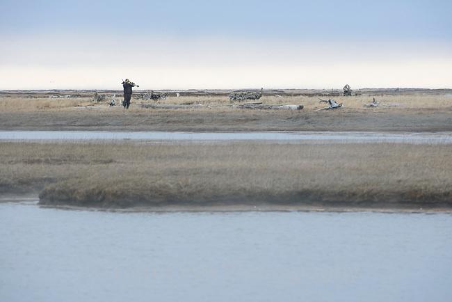 Wildlife Biologist Brian McCaffrey scans a coastal wetland for birds on a foggy morning. Yukon Delta National Wildlife Refuge, Alaska. June.