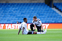 Leroy Fer of Swansea City receives treatment during the Sky Bet Championship match between Millwall and Swansea City at The Den in London, England. September 1, 2018