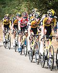 The main bunch including race leader Primoz Roglic (SLO) Jumbo-Visma during Stage 19 of La Vuelta d'Espana 2021, running 191.2km from Tapia de Casariego to Monforte de Lemos, Spain. 3rd September 2021.    <br /> Picture: Unipublic/Charly Lopez   Cyclefile<br /> <br /> All photos usage must carry mandatory copyright credit (© Cyclefile   Charly Lopez/Unipublic)