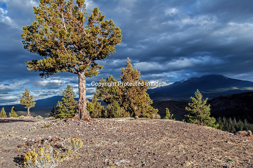 Mount Shasta on a cloudy day in the Fall, California, USA.