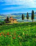 Italien, Toskana, Provinz Siena; toskanischer Bauernhof bei Chianciano Terme | Italy, Tuscany, Province of Siena: tuscan farm near Chianciano Terme