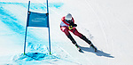 Kirk Schornstein, PyeongChang 2018 - Para Alpine Skiing // Ski para-alpin.<br /> Kirk Schornstein skis in the men's standing super-G // Kirk Schornstein skis en super-G debout masculin. 11/03/2018.