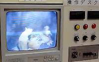 "Dogs are slowly gassed in a ""dreambox"" CCTV screen in the control room of a hokenjo or animal collection and health center.  Japan kills over 200,000 cats and dogs annually by gassing them with carbon dioxide...photo by  / Sinopix............"