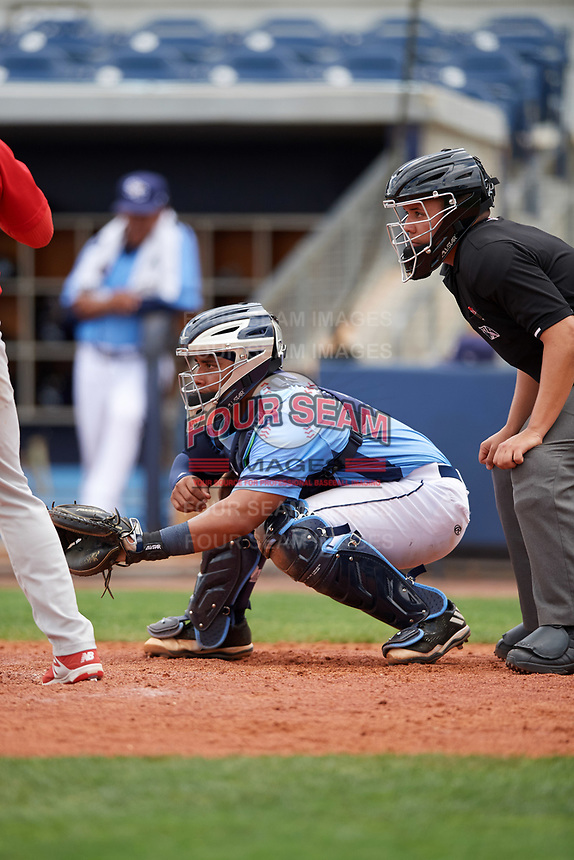 Charlotte Stone Crabs catcher David Rodriguez (10) and umpire J.C. Velez await the pitch during a game against the Palm Beach Cardinals on April 12, 2017 at Charlotte Sports Park in Port Charlotte, Florida.  Palm Beach defeated Charlotte 8-7.  (Mike Janes/Four Seam Images)