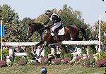 Jonathan Paget and Clifton Promise of New Zealand compete in the cross country phase of the FEI  World Eventing Championship at the Alltech World Equestrian Games in Lexington, Kentucky.