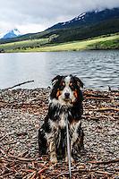Molly Montana at St. Mary Glacier National Park