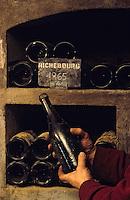 Europe/France/Bourgogne/21/Côte d'Or/Nuits Saint Georges: Les caves de la maison Charles Vienot - Vieilles bouteilles - Maître de chai présentant une bouteille de Romanée Richebourg