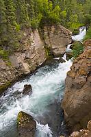 Margot Creek, Katmai National Park, Alaska