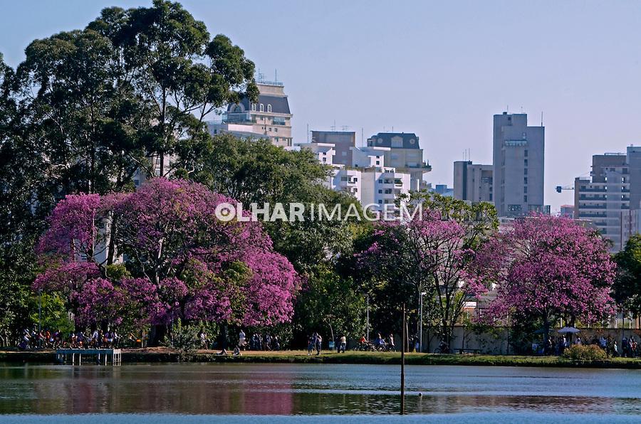 Arvores e lago do Parque do Ibirapuera. Sao Paulo. 2014. Foto de Juca Martins.