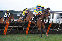 Little Boy Born ridden by Gavin Sheehan and trained by Suzy Smith jump the last in The Strong Flavours Catering Handicap Hurdle   during Horse Racing at Plumpton Racecourse on 10th February 2020