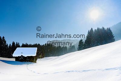 Deutschland, Bayern, Schwaben, Oberallgaeu, Oberstdorf, Ortsteil Tiefenbach: auf der Alpe Dornach   Germany, Bavaria, Swabia, Upper Allgaeu, Oberstdorf, district Tiefenbach: area around alpine pasture Dornach