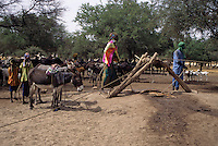 Akadaney, Niger. A Fulani Well in Semi-Arid Sahel Country, Central Niger.