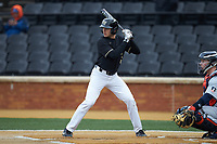 Michael Turconi (6) of the Wake Forest Demon Deacons at bat against the Illinois Fighting Illini at David F. Couch Ballpark on February 16, 2019 in  Winston-Salem, North Carolina.  The Fighting Illini defeated the Demon Deacons 5-2. (Brian Westerholt/Four Seam Images)