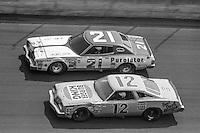 1979 Daytona, Firecracker 400, July