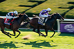 November 7, 2020 : Order of Australia, ridden by Pierre-Charles Boudot, wins the FanDuel Mile presented by PDJF on Breeders' Cup Championship Saturday at Keeneland Race Course in Lexington, Kentucky on November 7, 2020. Scott Serio/Eclipse Sportswire/Breeders' Cup/CSM