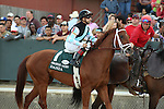 April 12, 2014: #1 Danza with jockey Joe Bravo aboard during post parade before the running of the Arkansas Derby at Oaklawn Park in Hot Springs, AR. Justin Manning/ESW/CSM