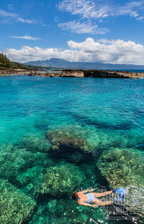 A snorkeler swims at Shark's Cove (or Sharks Cove) on the North Shore of O'ahu on a sunny day.