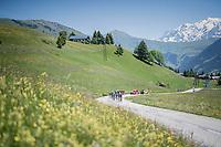 what is left of the 'peloton' halway up the first climb of the day; the Col de Saisies (Cat1/1663m)<br /> <br /> 69th Critérium du Dauphiné 2017<br /> Stage 8: Albertville > Plateau de Solaison (115km)