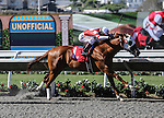 August 16, 2014: American Sailor with Tyler Baze aboard wins a 2 year old maiden race at Del Mar Thoroughbred Club in Del Mar, California. Zoe Metz/ESW/CSM