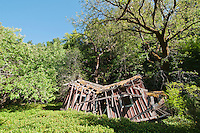 Ruins of an old house in Mendocino County, California
