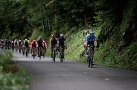 Polka Dot Jersey / KOM leader Julian Alaphilippe (FRA/Deceuninck - Quick-Step)<br /> <br /> Stage 7: Saint-Genix-les-Villages to Pipay  (133km)<br /> 71st Critérium du Dauphiné 2019 (2.UWT)<br /> <br /> ©kramon