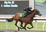 April 03, 2014: Hip 82 Indian Charlie - Buzz Song consigned by Equinox Inc worked 1/8 in 10:1 .  Candice Chavez/ESW/CSM
