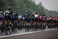 easy pedaling peloton<br /> <br /> Binckbank Tour 2017 (UCI World Tour)<br /> Stage 4: Lanaken > Lanaken (BEL) 155km